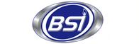 Burner Systems International, Inc.